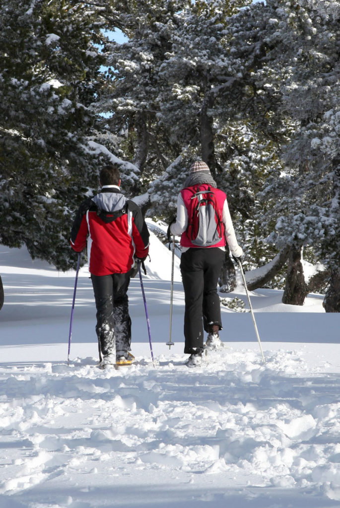 Cross Country Ski in Katahdin