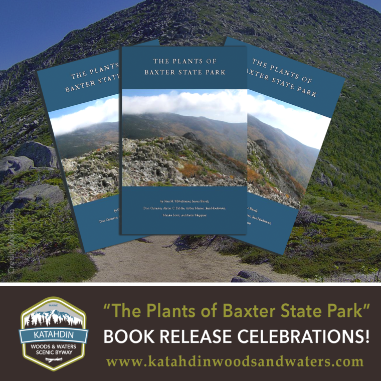 Plants-Baxter-State-Park-Book