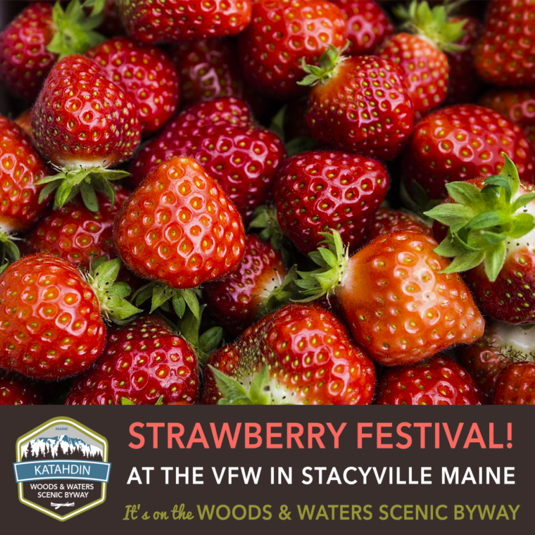 Strawberry-Festival-Stacyville-ME